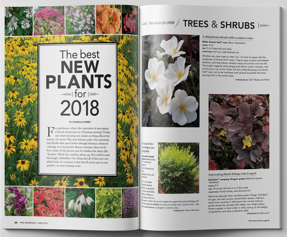 Better homes and gardens editorial calendar 2019 fasci garden for Better homes and gardens media kit